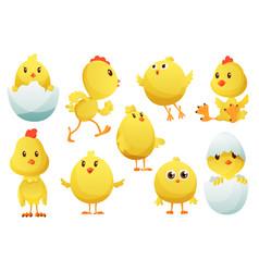 cute cartoon chicken set funny yellow chickens vector image