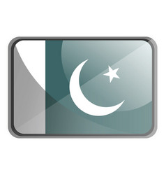pakistan flag on white background vector image