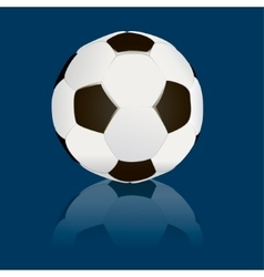 soccerball isolated vector image