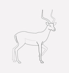 antelope icon line element of vector image