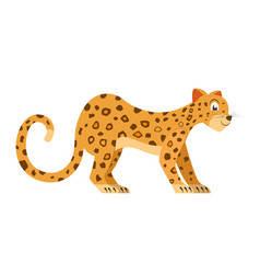 Cute leopard isolated on white background vector