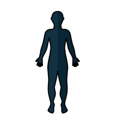 man anatomy silhouette isolated icon vector image