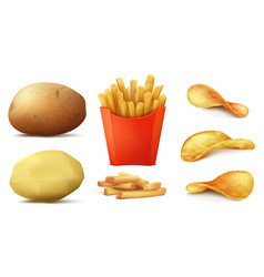 set potato snacks french fries chips vector image