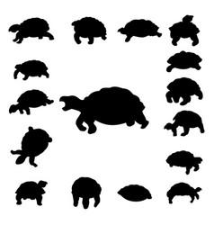 Set tortoise silhouette vector