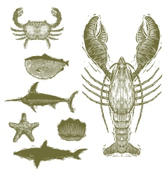 Woodcut sea creatures vector