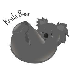 Koala bear isolated on white background vector image vector image