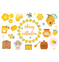honey collection beekeeping set of objects vector image