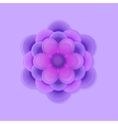 Lilac Purple Flower vector image