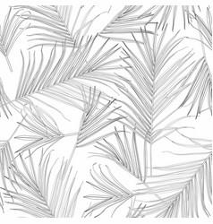 black white palm tree leaves line art background vector image