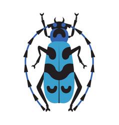 Blue exotic longhorn beatle flat design icon vector