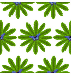 Butterfly and banana leaves seamless pattern vector