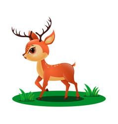 Cute little deer in grass vector