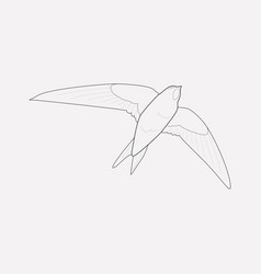 swift icon line element of vector image