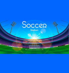 The soccer stadium vector
