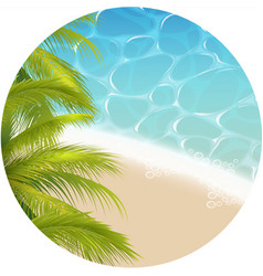 tropical paradizetheme vector image
