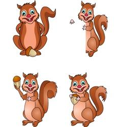 squirrel collection vector image vector image