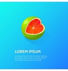 Fruit Citrus Isometric Icon vector image vector image
