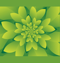 abstract green floral design background wallpaper vector image