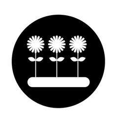 Cultivated flower garden icon vector