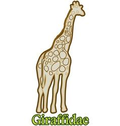 Giraffidae vector