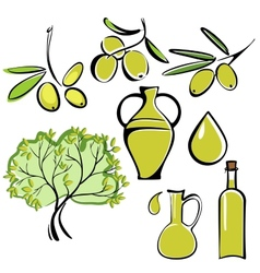 olive and olive oil icon set vector image