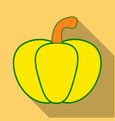 pumpkin autumn halloween pumpkin vegetable vector image