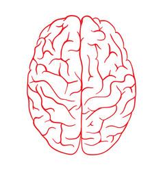 brain logo silhouette top view design vector image