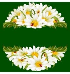 chamomile and ladybugs circle frame vector image vector image