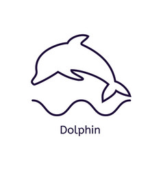 Dolphin icon on a white background vector