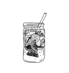 Hand drawn summer ice drink with citrus and vector