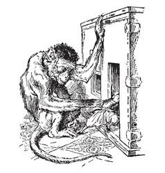 monkey grabbing gulliver vintage vector image