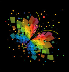 splash butterfly on black background vector image