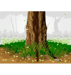 Trees in the forest vector image