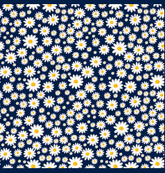 Daisy seamless pattern floral ditsy print vector