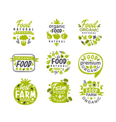 hand drawn gray and green organic healthy food vector image