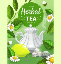 herbal tea with chamomile and mint leaves vector image
