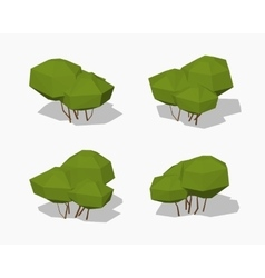 Low poly green bush vector image