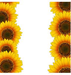 Orange yellow sunflower border vector