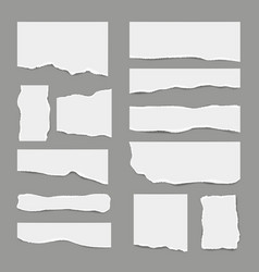 ripped white paper torn light scrap note paper vector image