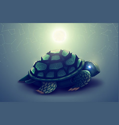 turtle with mosaic shell wild animal in nature vector image