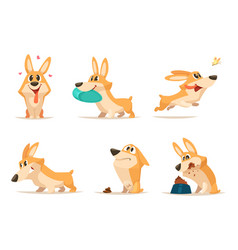 various of funny little dog in vector image