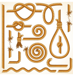 rope elements vector image