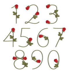 Floral alphabet Red roses with shadow from 0 to 9 vector image vector image