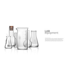 3d realistic empty chemical lab glassware set vector