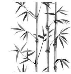 bamboo seamless vertical border on white vector image