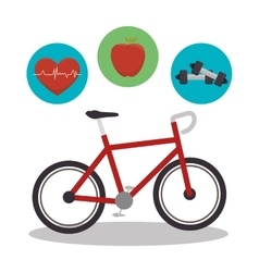 bicycle sport isolated icon vector image