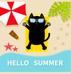 black cat sunbathing on beach yellow air pool vector image