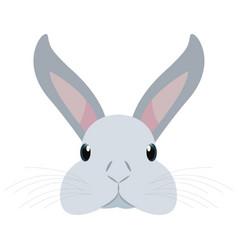 cute head rabbit vector image
