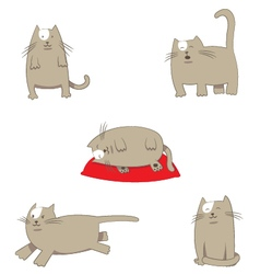 Funny stylized cartoon grey Cat in different poses vector