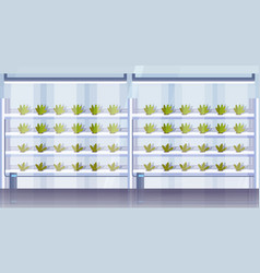 modern organic hydroponic vertical farm interior vector image